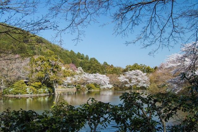 arashiyama y el norte de kioto japon (43)