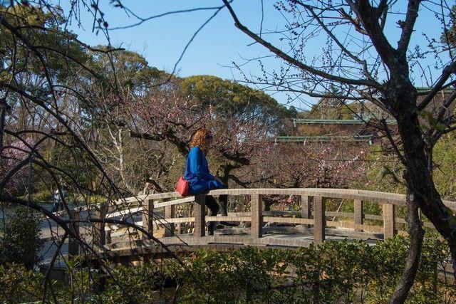 arashiyama y el norte de kioto japon (48)