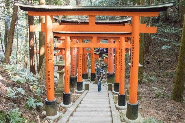 fushimi inara taisha kioto de dia (13)
