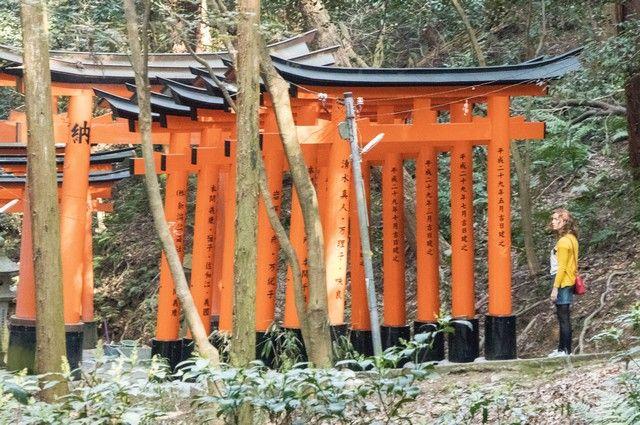 fushimi inara taisha kioto de dia (14)