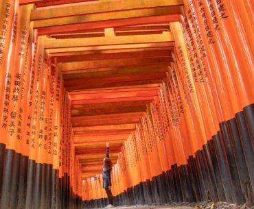 fushimi inari kyoto japon portada