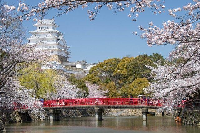 himeji en hanami desde kioto
