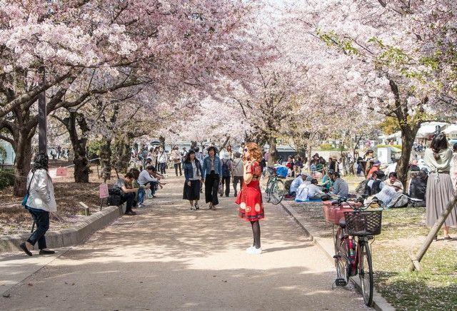 hiroshima japon parque de la paz (7)