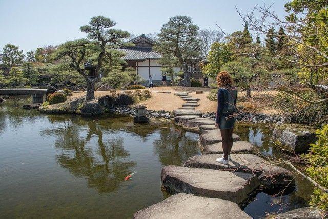 jardines kokoen himeji en hanami (2)