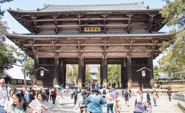 nara kioto en hanami (5)