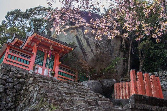santuario kamikura shingu kumano kodo japon (9)