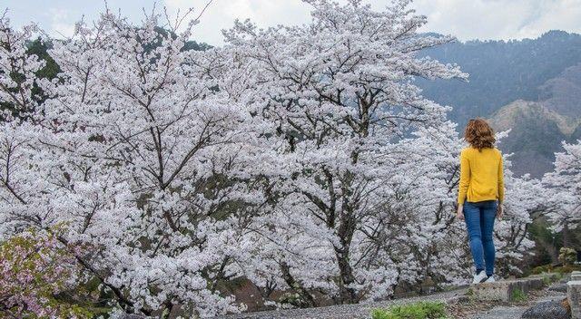 La ruta nakasendo de magome a tsumago japon (33)