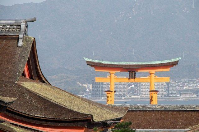 daisho in miyajima japon (1)