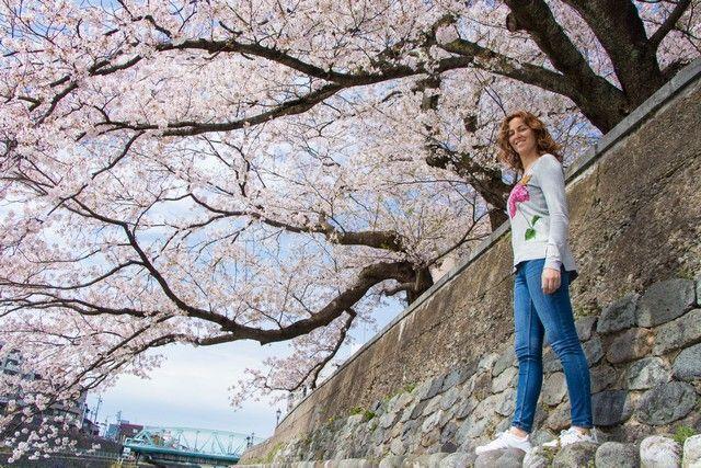 kanazawa en un día japon en hanami (28)