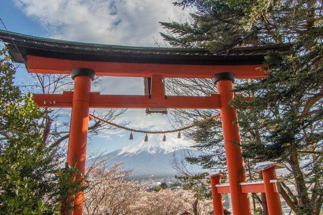 kawaguchiko monte fuji japon (11)