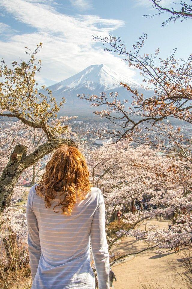 kawaguchiko monte fuji japon (14)