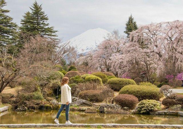 kawaguchiko monte fuji japon (6)