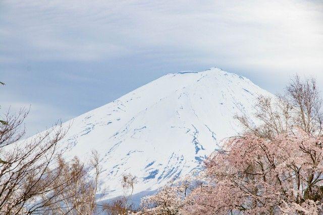 kawaguchiko monte fuji japon (8)