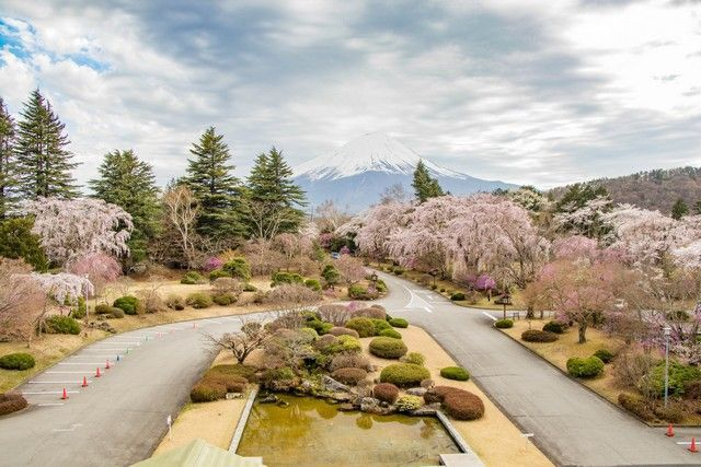 kawaguchiko monte fuji japon (9)