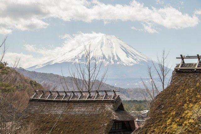 Saiko Iyashi No Sato Nemba monte fuji kawaguchiko (4)