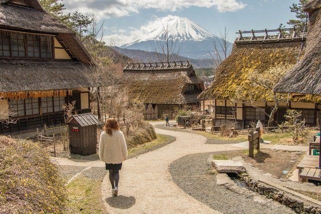 Saiko Iyashi No Sato Nemba monte fuji kawaguchiko (5)