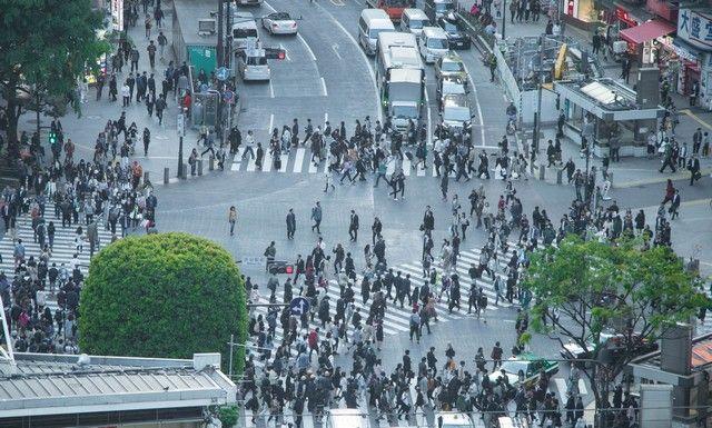 cruce de shibuya miradores tokio (3)