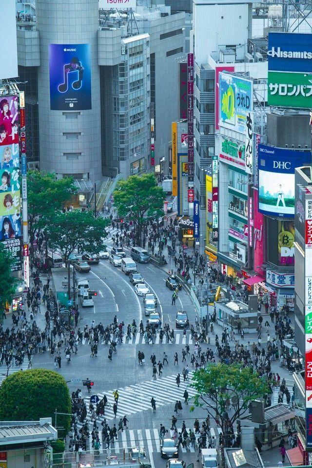 cruce de shibuya miradores tokio (5)