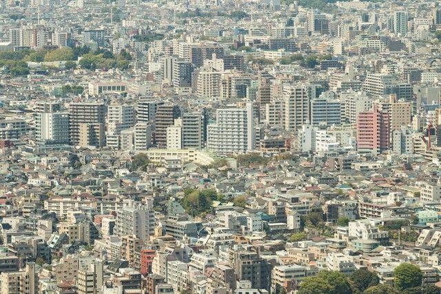 edificio metropolitano vistas tokio (5)