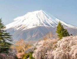 Mis hoteles en Japón