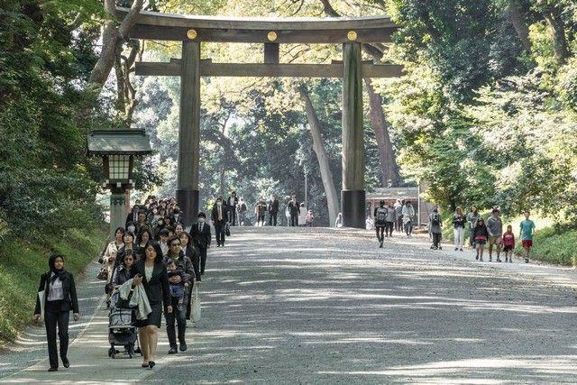 santuario meiji shibuya tokio (2)
