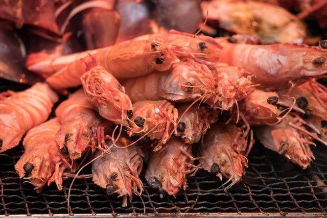 giza tokio mercado tsukiji (4)