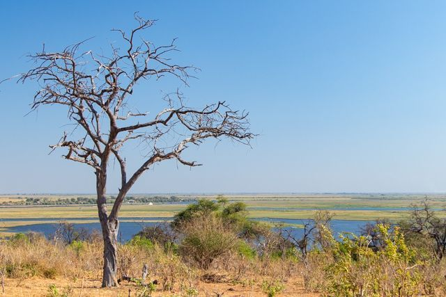 parque nacional chobe botswana (2)