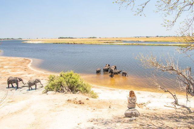 parque nacional chobe botswana (33)