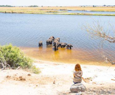 parque nacional chobe botswana