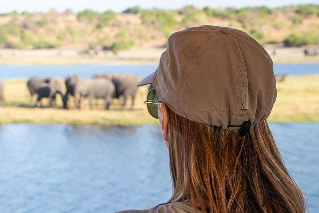 safari en barco por la ribera del chobe botswana (23)