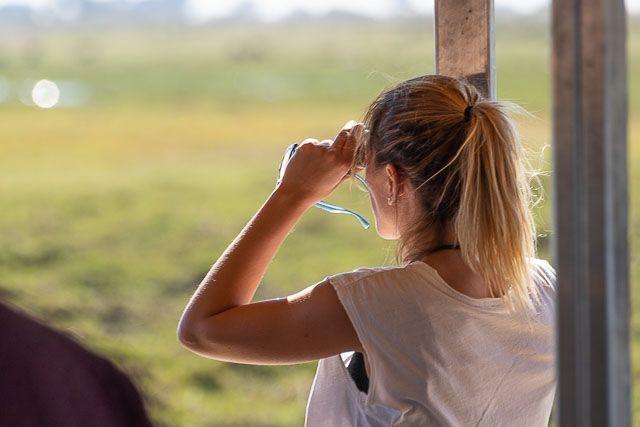 safari en barco por la ribera del chobe botswana (3)