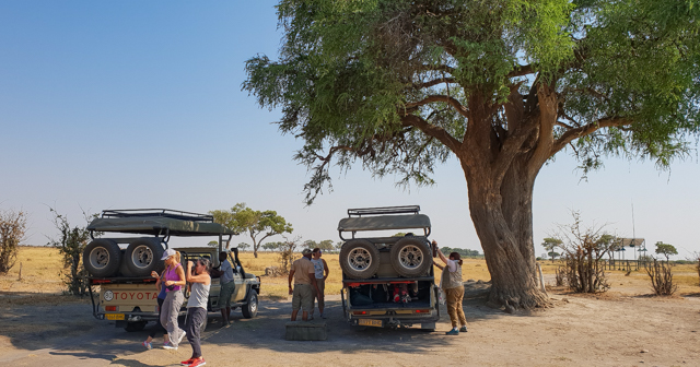campamento safari movil en botswana (9)