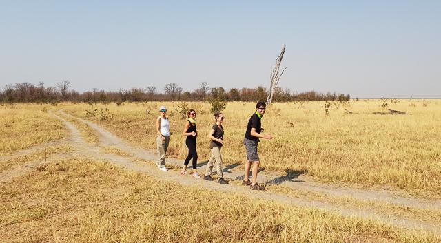 canal de savuti parque nacional chobe botswana (2)