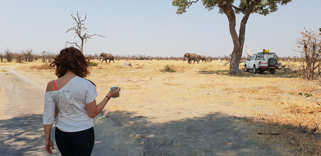 canal de savuti parque nacional chobe botswana (5)
