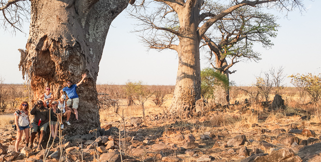 canal de savuti parque nacional chobe botswana (8)