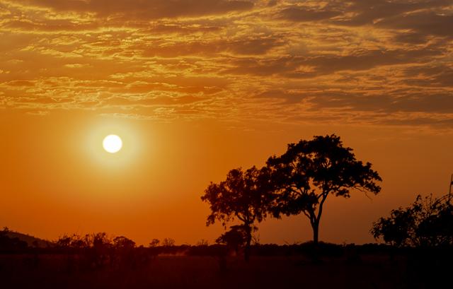 el canal de savuti parque nacional chobe botswana (1)