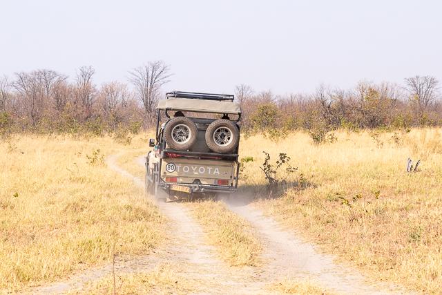 el canal de savuti parque nacional chobe botswana (20)