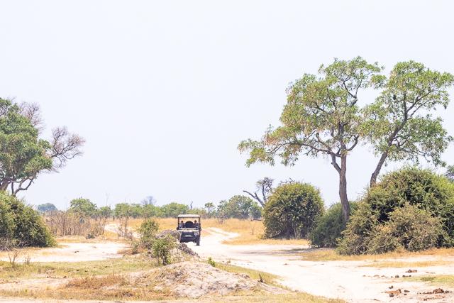 el canal de savuti parque nacional chobe botswana (29)