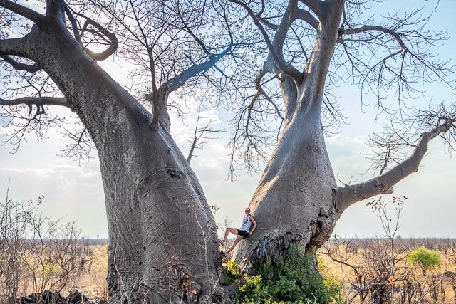 el canal de savuti parque nacional chobe botswana (37)