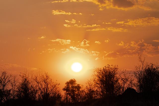 el canal de savuti parque nacional chobe botswana (45)