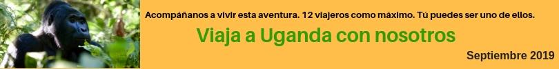viaje a uganda callejeando por el mundo