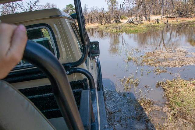 safari en barca por el río khwai (18)