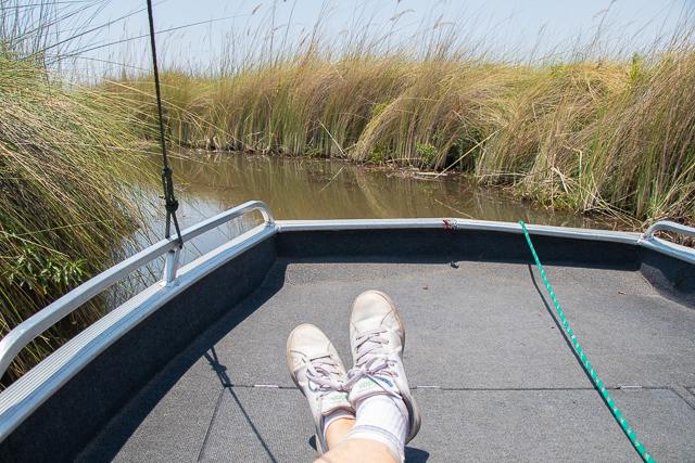 safari en barca por el río khwai (20)