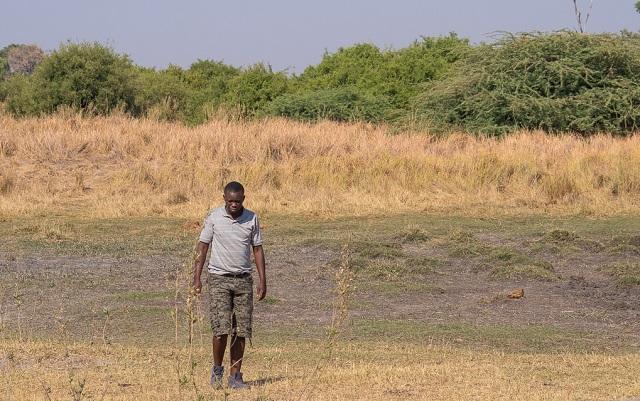 safari moremi botswana (35)