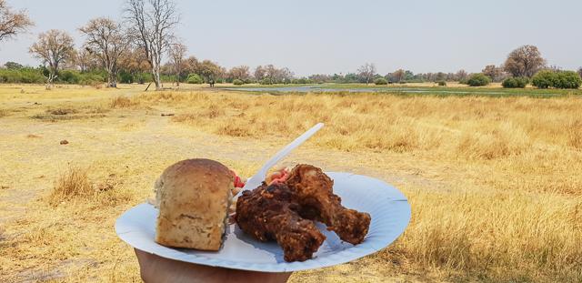 safari por la ribera del río khwai botswana (4)
