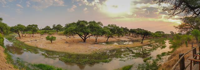 safari por la ribera del río khwai botswana (8)