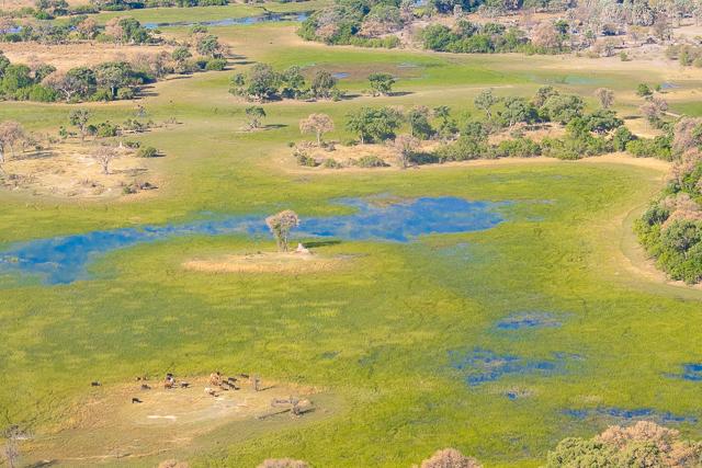 sobrevolar en avioneta el delta del okavango (10)