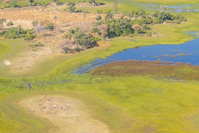 sobrevolar en avioneta el delta del okavango (12)