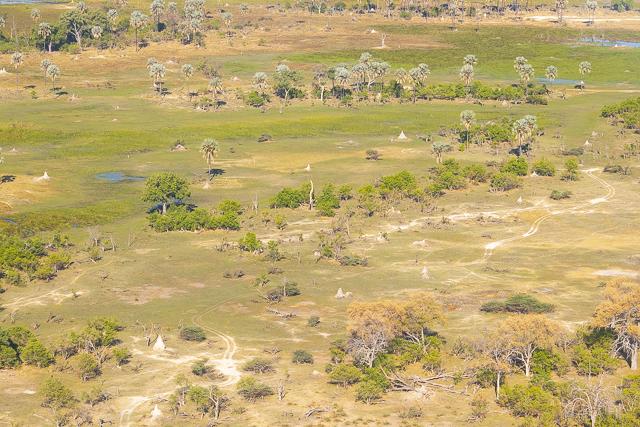 sobrevolar en avioneta el delta del okavango (14)