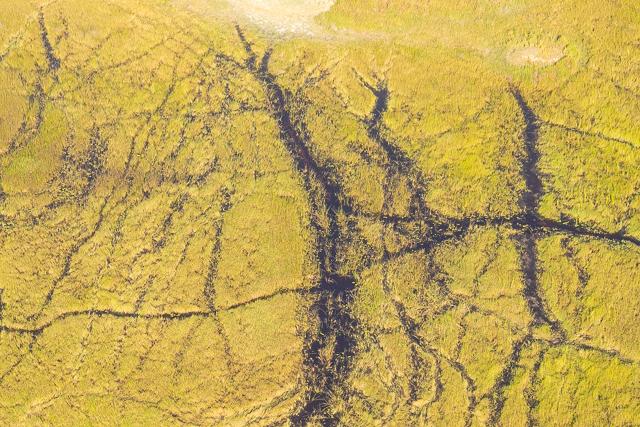 sobrevolar en avioneta el delta del okavango (15)